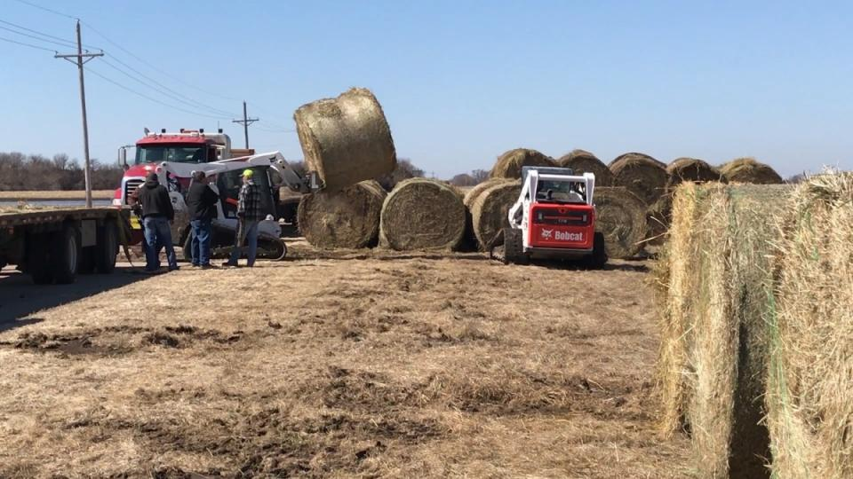 Donated hay bales accumulate at the Eastern Nebraska Research and Extension Center