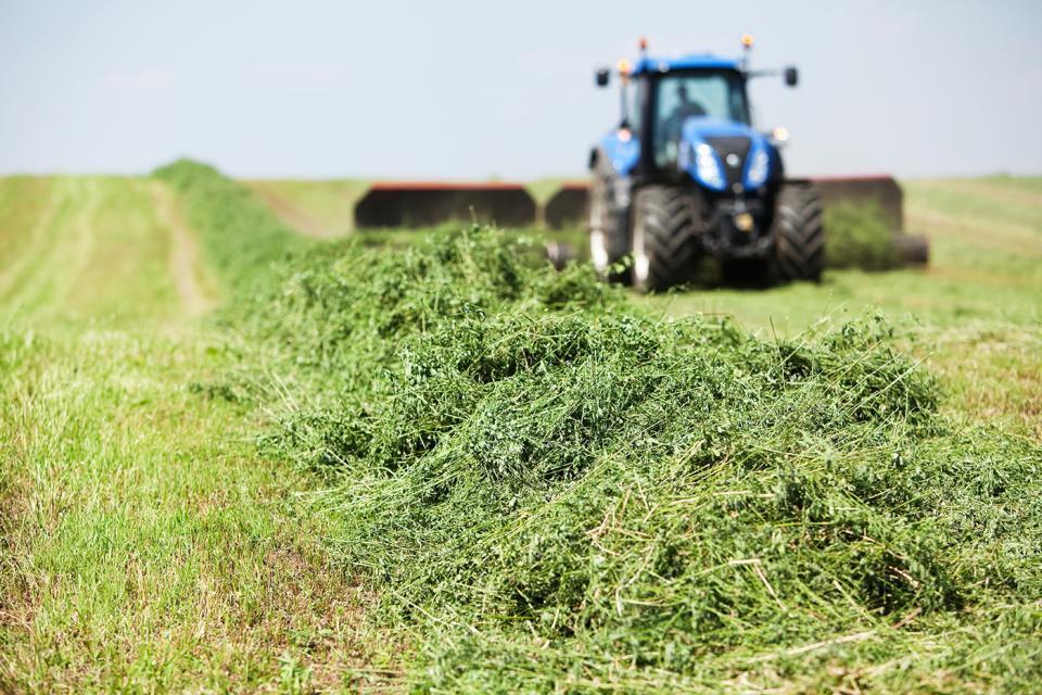 Cutting hay in field