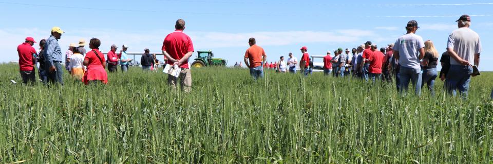 2019 HPAL field day