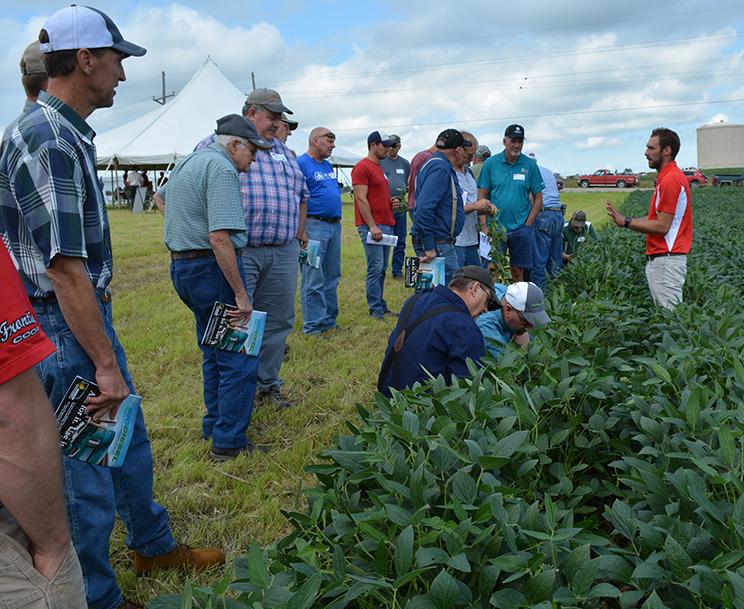Soybean Management Field Day field demo