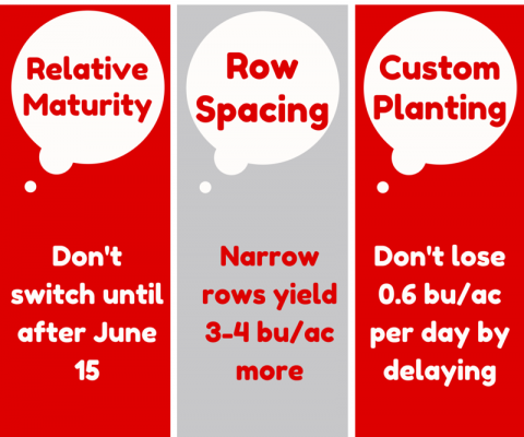 3 top tps for delayed soybean planting