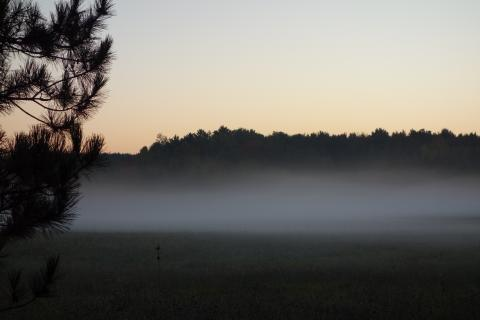 Photo of ground fog indicating a temperature inversion