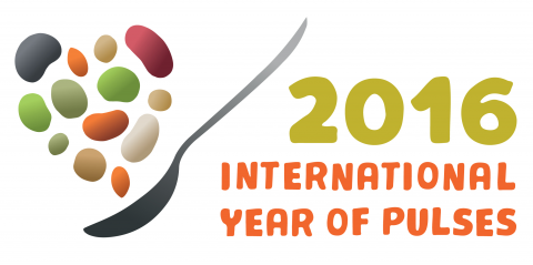 International Year of the Pulse icon