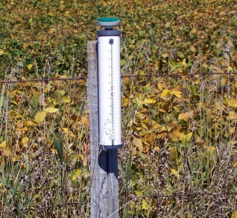ETgage in a soybean field