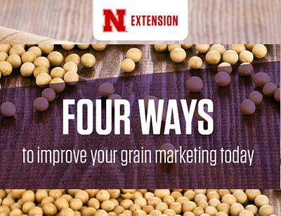 Four ways to improve your grain marketing today
