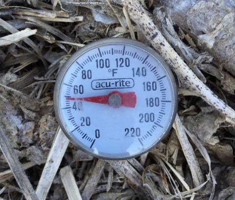 Thermometer taking temperature of residue-covered soil