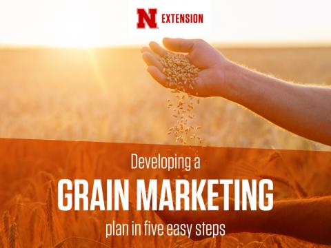 Grain Marketing graphic