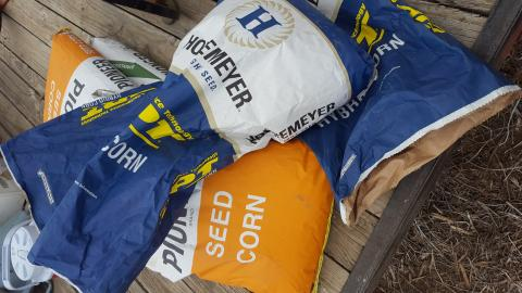 Bags of corn seed