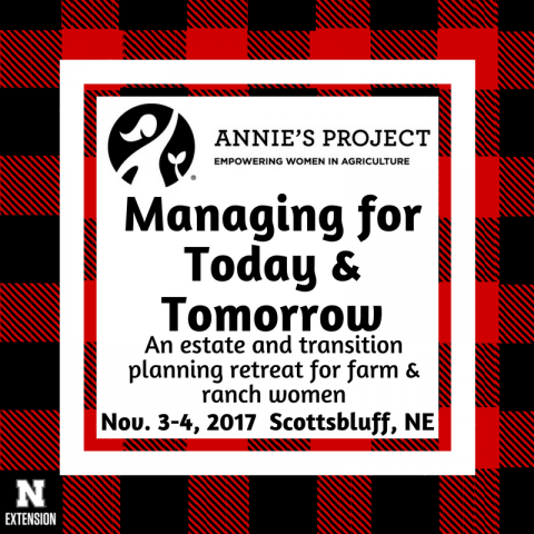 Ad for Annie's Project Nov. 3-4