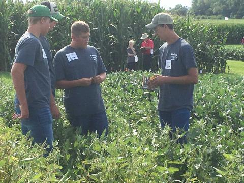 Colfax County Crop Scout Team, winners in 2016