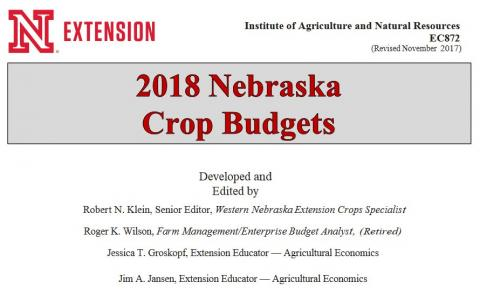 Crop Budget title page