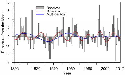 Summer precipitation patterns