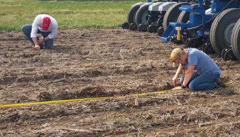 Joe Luck and Rachel Stevens in a field
