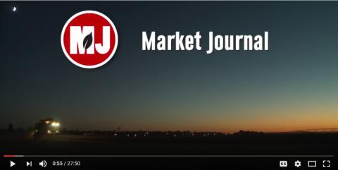 Market Joural screen shot