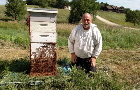 John Wilson with bees