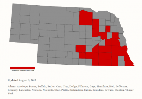 Counties with confirmed southern rust