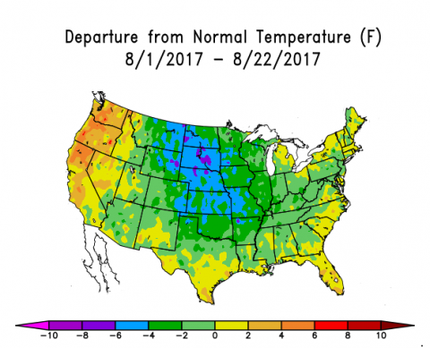 US map of temperature departures for the first three weeks of August