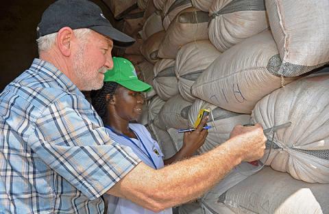 checking grain moisture