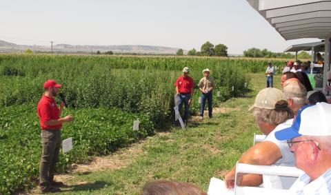 Nevin Lawrence speaking at 2016 Nebraska Dry Bean Field Day