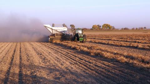Figure 1. Dry bean harvest underway in the Nebraska Panhandle Wednesday, Oct. 18. (Photo by Gary Stone)