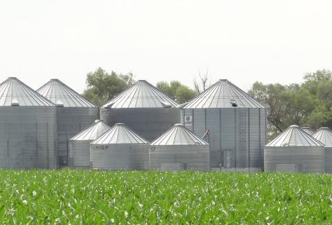 Figure 1. Maintaining grain quality during extended storage requires extra care and management.