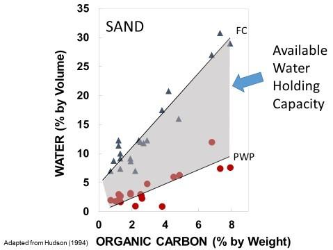 Chart depicting relationship between soil organic carbon and available water holding capacity in sandy soil.