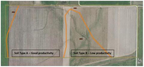 On-farm research field
