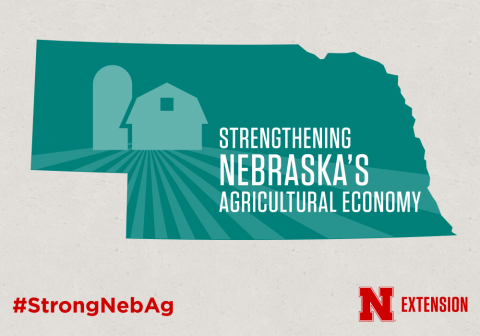 Strengthening Nebraska's Agricultural Economy. Links to full article 'A Checklist for Farm/Ranch Debt Workout'