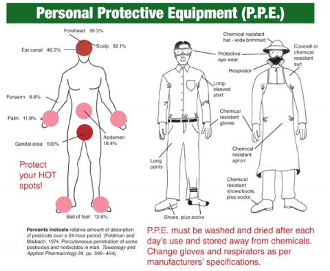 Body Exposure Points and Personal Protective Equipment