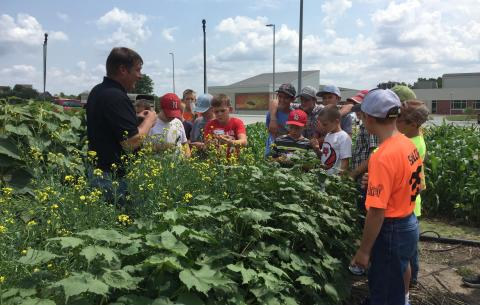 Youth at Youth Agronomy Field Day