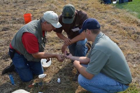 three farmers inspecting soil