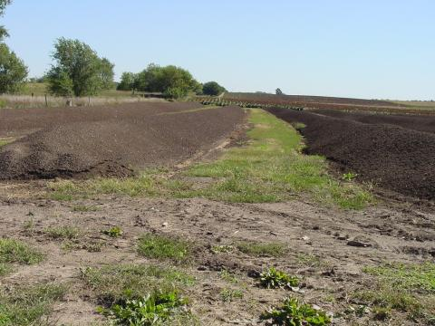 Land-applied manure