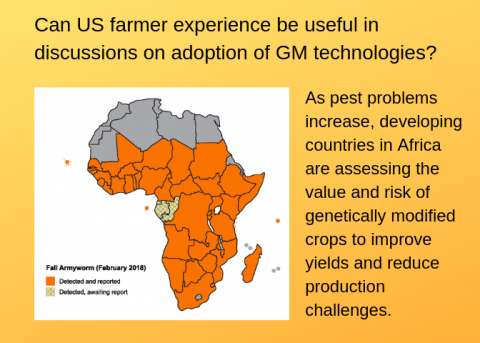 Infographic showing map of Africa and extent of fall armyworm infestation and asking Can US farmer experience be useful in discussions on adoption of GM technologies?