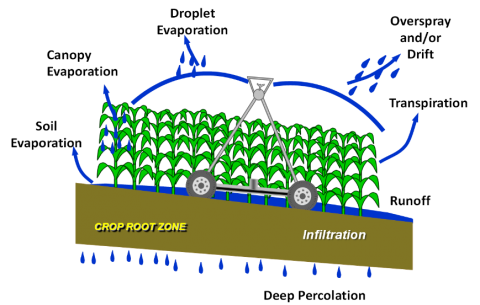 Types of water losses from center pivot irrigation