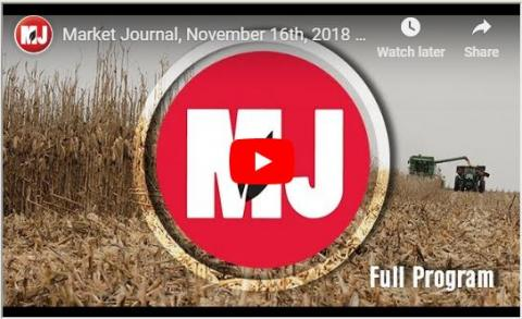 Market Journal screen capture for November 16, 2018.