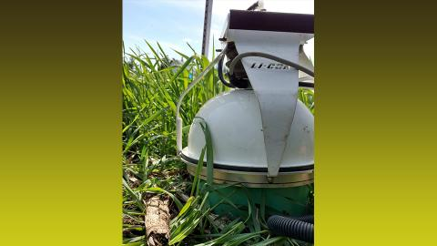 CO2 sensor in rye cover crop