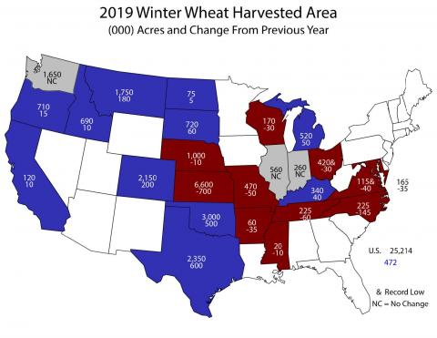 Estimate by USDA NASS of winter wheat acres to be harvested in 2019 and difference from 2018. Nebraska is to harvest 1,000,000 wheat acres, down 10,000 from 2018.