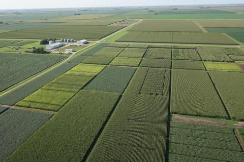 Aerial view of field trials at the university's South Central Agricultural Lab near Clay Center.
