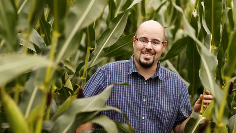 By measuring the water use of plants on an hourly or even minute-by-minute basis, Nebraska's James Schnable and colleagues hope to better understand and eventually improve how crops respond to drought. (Craig Chandler/University Communication)