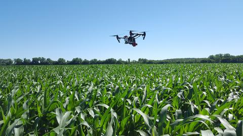 Drone equipped with sensors to read nitrogen levels