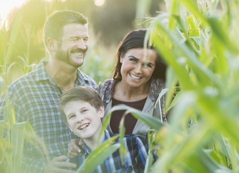 A happy family standing in a corn field