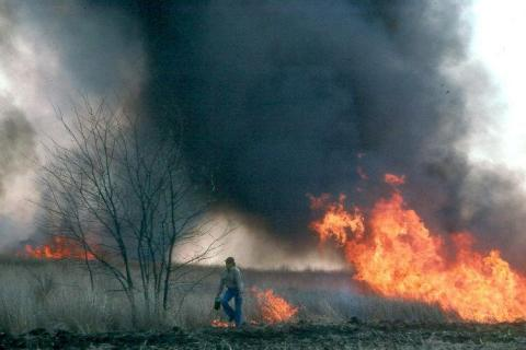 A grassland burn. Links to article Prescribed Burn School Jan. 18 at Osceola