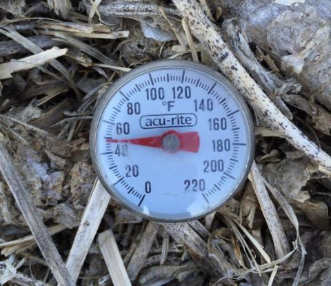 Meat thermometer measuring soil temperature