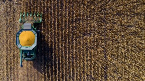 combine harvesting crops
