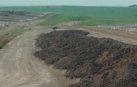 livestock operation manure pile