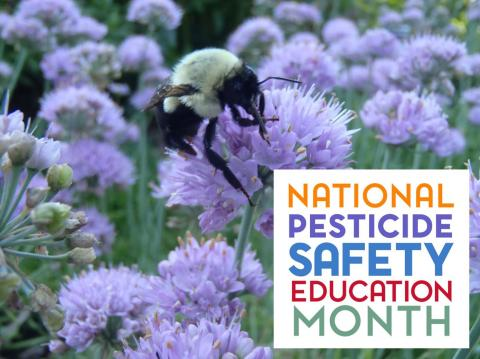 National Pesticide Safety Education Month