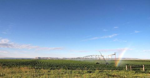 Center pivot irrigation