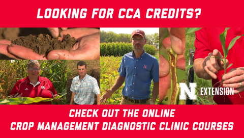 Looking for CAA Credits? Check out the online crop management diagnostic clinic courses