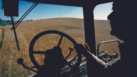 Farmer harvesting field