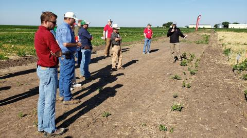 2021 Weed Management Field Day project demo